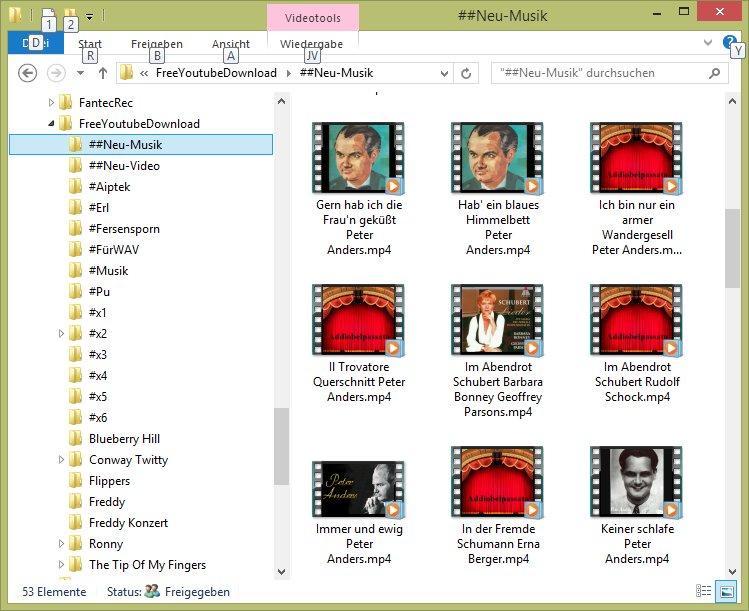 Keine Frameanzeige von Videos im Explorer bei Miniaturansicht oder im Vorschaufenster-ex81.jpg