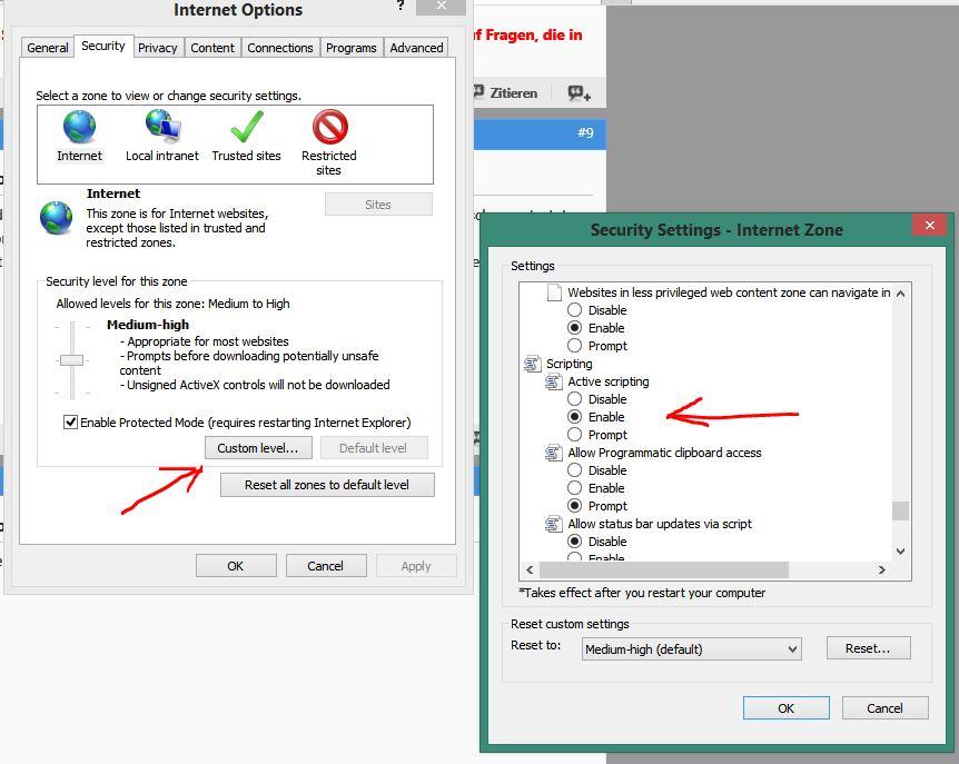Windows 8.1 und IE 11, Probleme bei gewissen Webseiten.-jascri.jpg