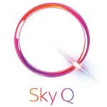 Sky Q Mini Receiver einrichten mit dem Internet per WLAN oder Netzwerkkabel verbinden
