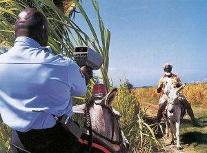 afrikanisches_Radar.jpg