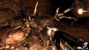 Aliens_vs_Predator_aug09_shot04.jpeg